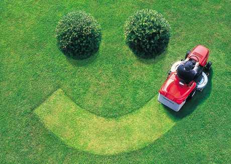 nasmejani travnjak